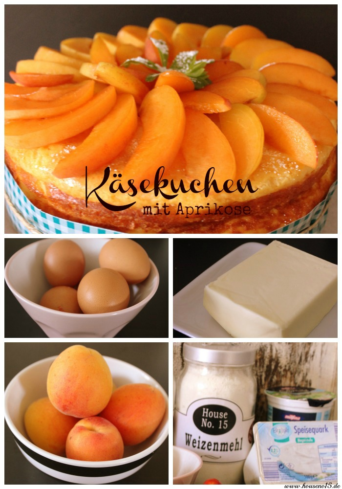 Aprikosen-Käsekuchen2