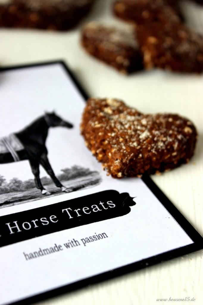Horse Treats4