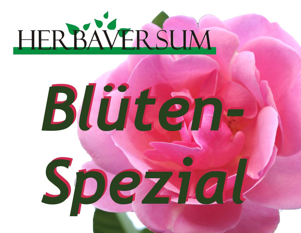 Blüten-Spezial