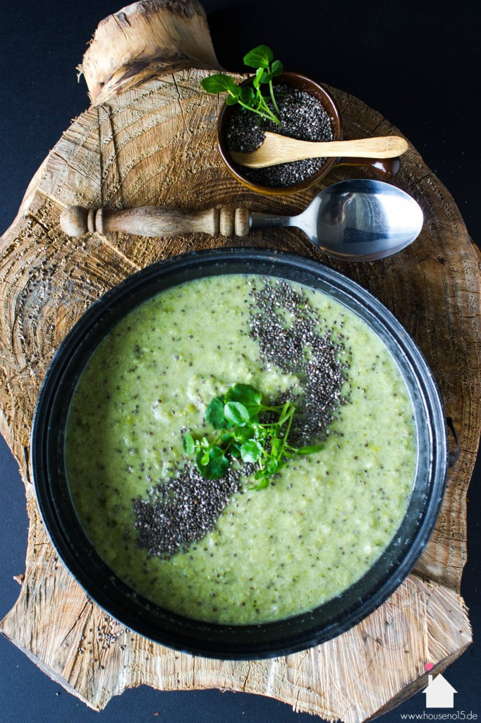 grüne Suppe1.1