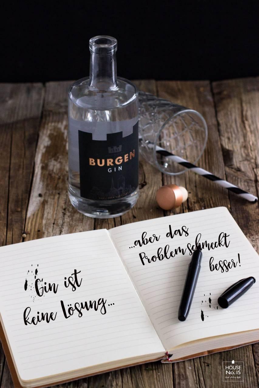 Gin Kochbuch