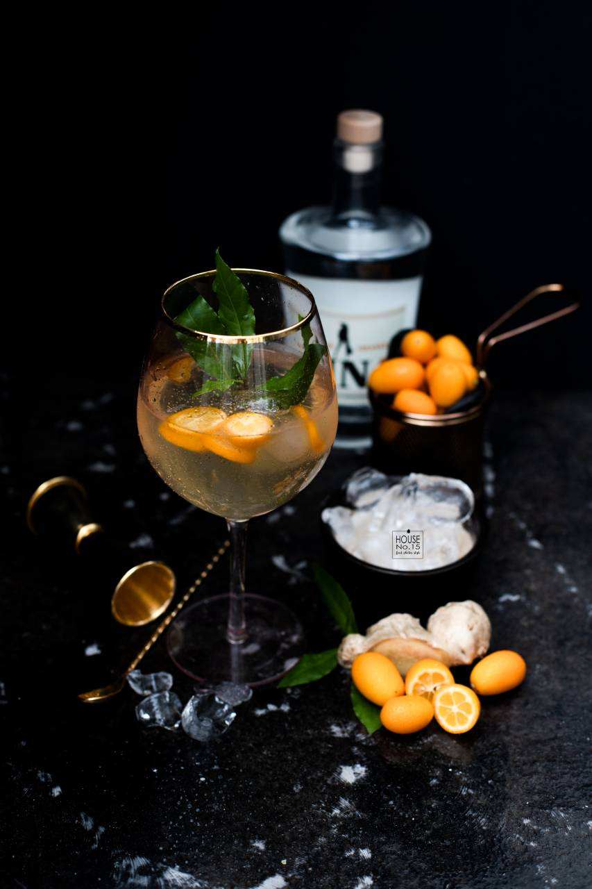 Ginger-Gin-Cocktail2.1